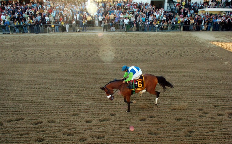 After winning the Kentucky Derby, Barbaro shattered his hind leg in the Preakness at Pimlico in 2006. After a months-long struggle that riveted public attention, the horse was euthanized. (Doug Kapustin/Baltimore Sun)