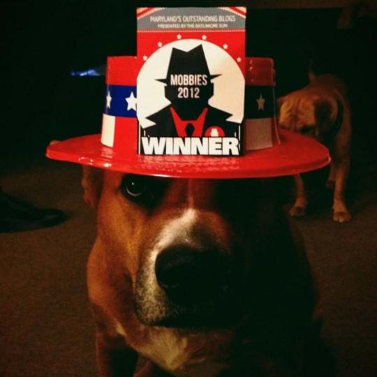 Bailey celebrating the Mobbie win for Best Instagram! (Credit: Josh Flynn)