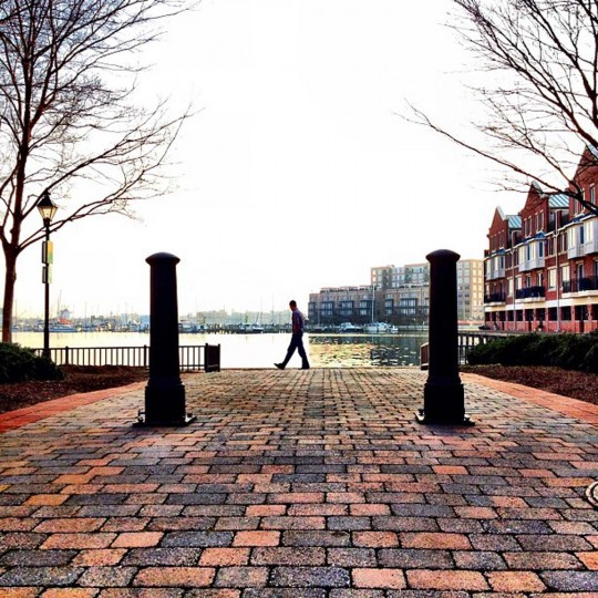 """Nice Day for a Stroll – I took this when I was walking Bailey one day down by the water and happened to see this guy as he was walking between the two posts and snapped a photo. I think the way his front foot is pointed up looks like """"strolling"""" and it was a gorgeous evening. (Credit: Josh Flynn)"""