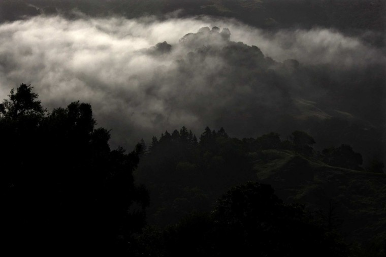 May 15, 2012: The early morning mist settles over the hills of Garberville, California, where many marijuana growers have been raising their annual crops for years. (Genaro Molina/Los Angeles Times/MCT)