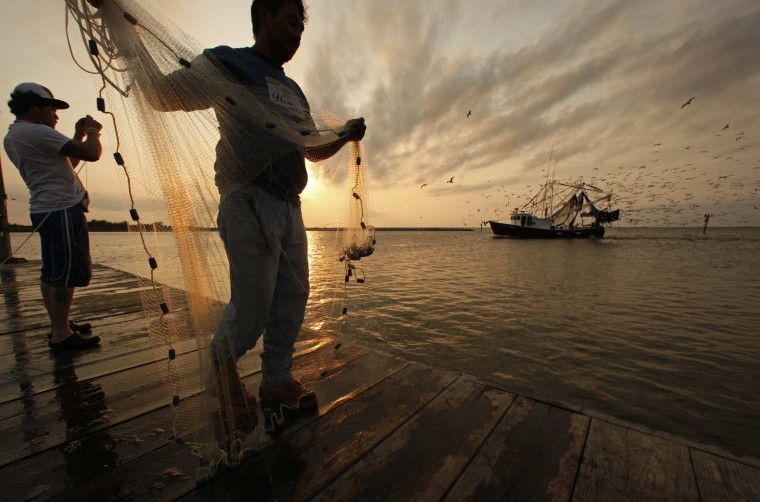 April, 15, 2011 - One year after the Deepwater Horizon accident, life in many parts of the region was getting back to normal. Tomas Maldonado, center, and Gilberto Reyes, throw nets to catch shrimp off of the quiet docks in Grand Isle, as a loaded shrimp boat covered with birds pulls into port. In May 2010, the same docks were used as a command center for the oil spill disaster efforts. (Carolyn Cole/Los Angeles Times)