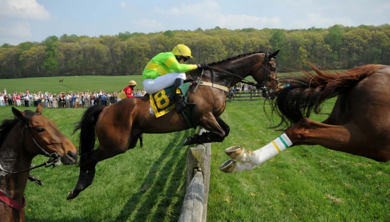 Foiled Again, with Shane Burke aboard, clears a jump during the 112th running of the Maryland Hunt Cup steeplechase in Glyndon in April 2008. (Doug Kapustin/Baltimore Sun)