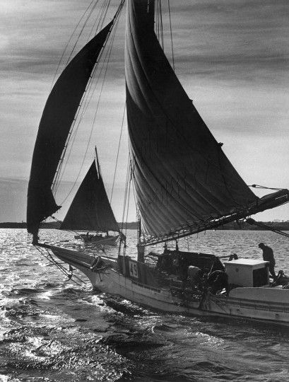A working oyster boat out on the Chesapeake Bay. The photograph was published in December of 1967. (Robert F. Kniesche/Baltimore Sun)
