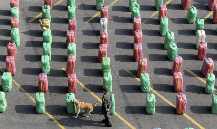 May 24, 2012: A police officer and a dog stand guard near packages of marijuana seized in Cali, Columbia. Narcotics police seized eight tons of marijuana at checkpoints on roads in Valle del Cauca, authorities said. (Jaime Saldarriaga/Reuters)