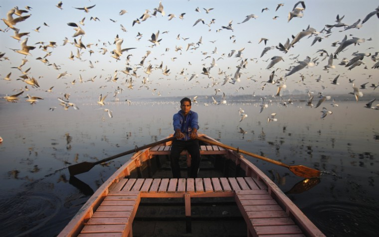 Migratory birds fly above a man rowing a boat on the Yamuna river in the old quarters of Delhi. (Mansi Thapliyal/Reuters)