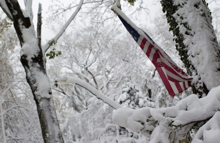 An American flag is seen among trees destroyed by Superstorm Sandy and covered in snow in Manhasset, New York November 8, 2012. An unseasonably early nor'easter winter storm brought snow, rain and dangerous winds to the U.S. Northeast, plunging many residents of the most populous region of the country back into darkness just as they were recovering from Superstorm Sandy. (Shannon Stapleton/Reuters photo)
