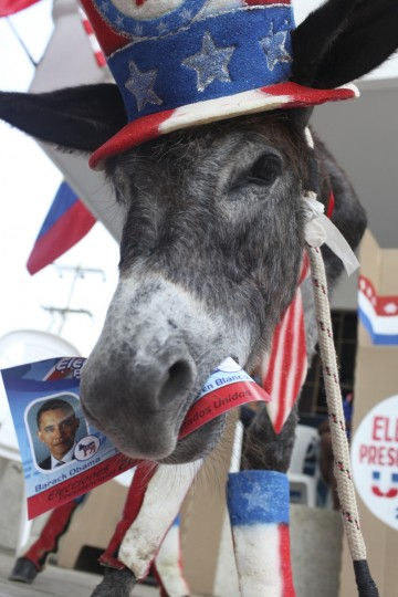A donkey named Demo is pictured during a symbolic election organized by owner, attorney and former mayor of the town of Turbaco, Silvio Carrasquilla, known as Barack Obama's number one fan, in front of his house in Turbaco November 6, 2012. Obama won the symbolic election in Turbaco with 2,787 votes against Romney's 288 votes. (Joaquin Sarmiento/Reuters)