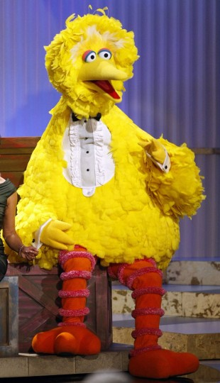 Sesame Street character Big Bird sits onstage before accepting a lifetime achievement award at the 36th Annual Daytime Emmy Awards at the Orpheum Theatre in Los Angeles in 2009. (Danny Moloshok/Reuters/Files)
