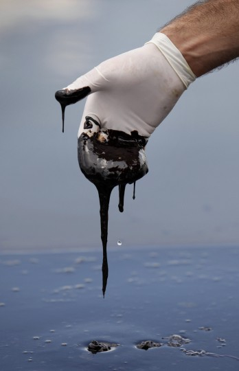 June 15, 2010 - A member of Gov. Bobby Jindal's staff reaches into thick oil on the surface of the water. (AP Photo/Gerald Herbert)