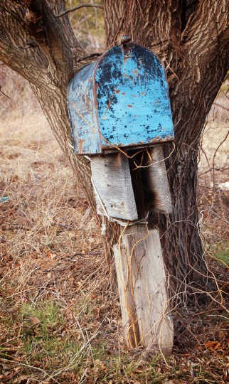 "The winner for this week's Reader SunShots series ""Mailboxes"" goes to Mary Sloan Roby for her of a worn blue mailbox shot near Ellicott Island, MD. Mary took the picture with a Nikon D50 DSLR camera. Here is a critique by Baltimore Sun director of photography Robert K. Hamilton: ""The muted colors of the image allow the worn blue color of the mailbox to take centerstage. The composition is simple, but sometimes simple is best."""