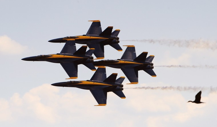 The Navy's Blue Angels practice their performance over Fort McHenry in conjunction with Sailabration. They did several practice runs including this one where a goose joins them in formation. (Gene Sweeney Jr./Baltimore Sun)