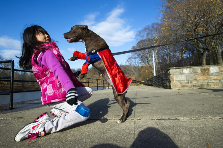 Kylee Kim, 7, received Sasha the Superhero Pup as a birthday present, and the two even won a Halloween lookalike contest. Sasha and Kylee play at Robert E. Lee Park under the watchful eye of mother, Heather Kim of Towson. (Christopher T. Assaf/Baltimore Sun)