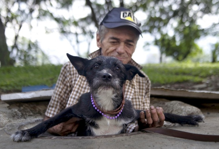 Colombian Miguel Restrepo helps his dog get out of the sewer where they live in Medellin, Antioquia department, Colombia. Restrepo, 62, is a homeless man who has lived with his wife for more than twenty years in a sewer, near Medellin's downtown. The place is around three by two by 1.4 meters of height and has a stove, a television, a bed and a fan. (Raul Arboleda/Getty Images)