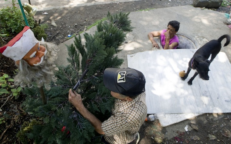 Colombian Miguel Restrepo (L) prepares a Christmas tree as his wife Maria Garcia watches from the sewer. (Raul Arboleda/Getty Images)
