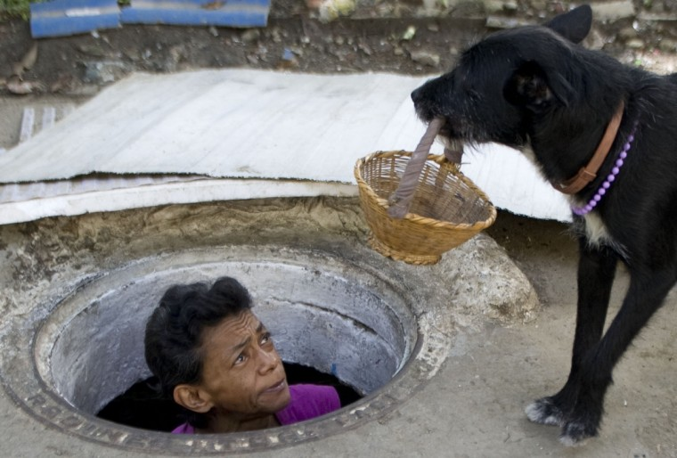 Colombian Maria Garcia looks at her dog. (Raul Arboleda/Getty Images)