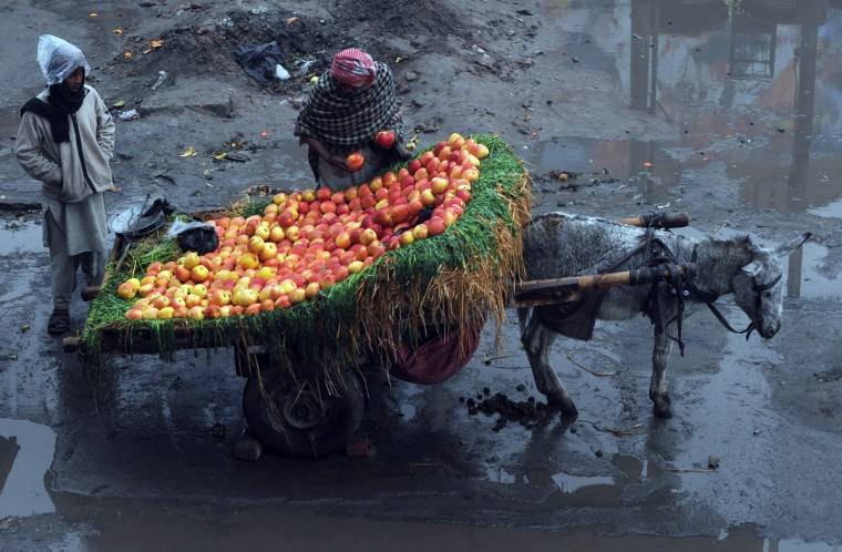 A Pakistani vendor arranges apples on his donkey cart in Lahore. High food prices have derailed ambitious aims to slash extreme poverty and hunger across the world by 2015, a World Bank and International Monetary Fund report said. (Arif Ali/Getty Images)
