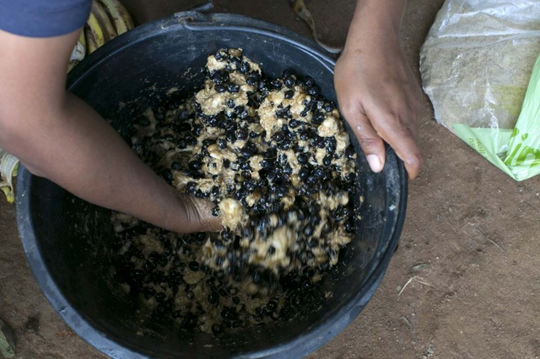 Coffee beans are seen being stirred into a mixture with fruit and rice that will be fed to some elephants at an elephant camp at the Anantara Golden Triangle resort on December 9, 2012 in Golden Triangle, northern Thailand. (Paula Bronstein/Getty Images)