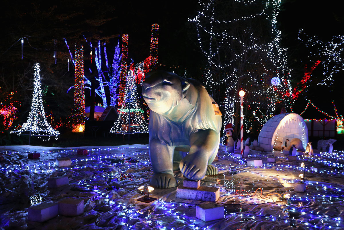 christmas light festival ottawa