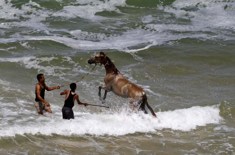 Palestinian men bathe a horse in the sea in Gaza City on August 28, 2012. Life in the poor and crowded Gaza Strip is going to get harsher still unless action is taken now, according to a new United Nations report. (Mohammed Abed/AFP/Getty Images)