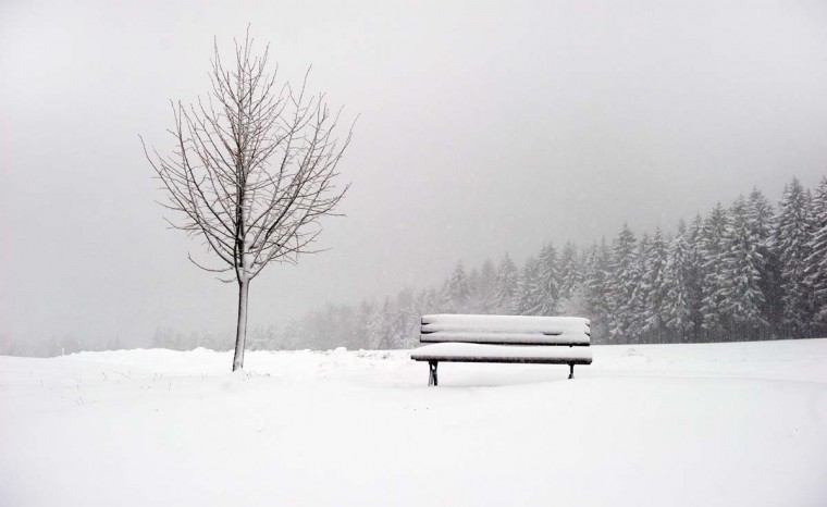 A bench is covered by snow in Oberfrauendorf, eastern Germany on November 29, 2012. (Arno Burgi/AFP/Getty Images)