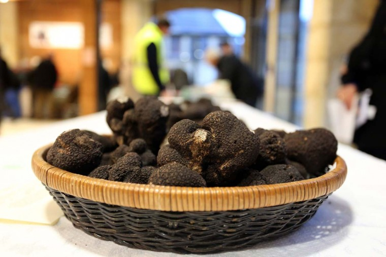 A picture shows a basket containing black Perigord truffles during the first truffle market of the season in Saint-Alvere, near Bergerac in Dordogne, southern France, on December 3, 2012. (Nicolas Tucat/AFP/Getty Images)
