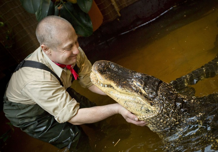 Orazio Martino poses with his 23-year-old Mississippi alligator Blacky in his private a basin at his house in Dietzenbach, center Germany. With his private zoo and its exotic shows, the former pizza chef is known throughout Germany. (Frank Rumpenhorst/AFP/Getty Images