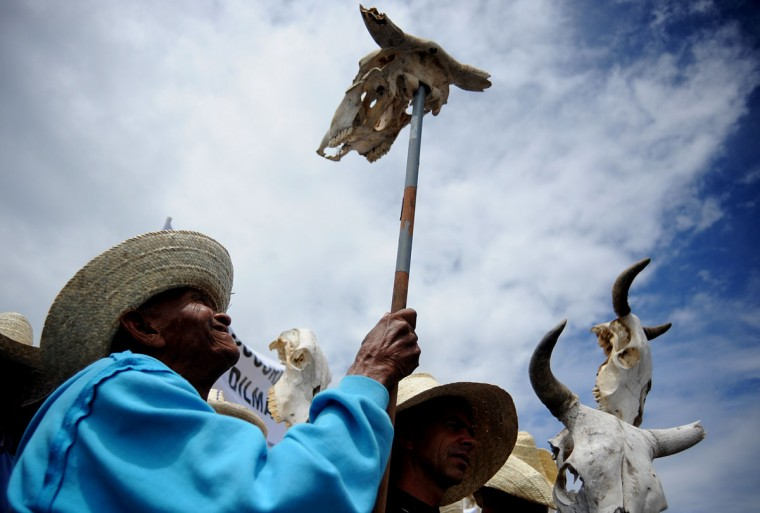 Farmers from the Brazilian northeast carry out a demonstration holding cattle skulls in front of the Planalto Palace in Brasilia. The protesters demand the cancellation of their debts and help from the government to alleviate the effects of the drought that rages over the region this year. (Pedro Ladeira/AFP/Getty Images)