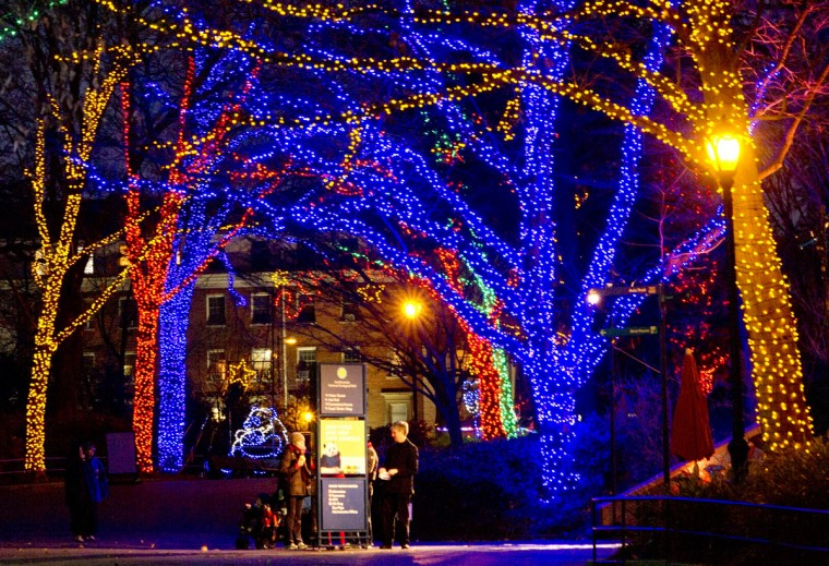 Visitors read an information board on the main alley of the National Zoo in Washington D.C, which is decorated for the holidays. (Mladen Antonov/AFP/Getty Images)