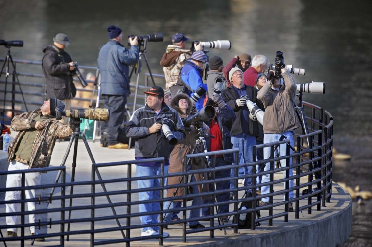 Photographers scan the sky as they search for bald eagles to photograph at the Conowingo Dam. Large numbers of bald eagles gather downstream of Conowingo Dam where fish are in abundance. (Kenneth K. Lam/The Baltimore Sun)