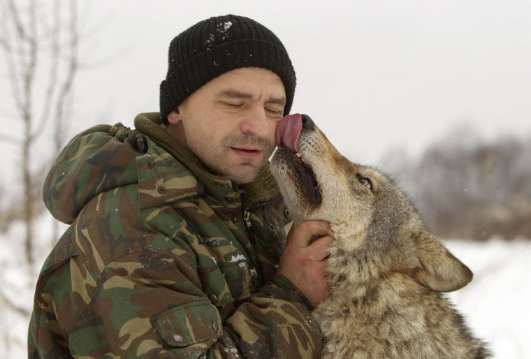 Ecologist Dmitry Shamovich plays with a tamed wolf at his house in the remote village of Sosnovy Bor, some 270 km (168 miles) northeast of Minsk, Belarus. (Vasily Fedosenko/Reuters)