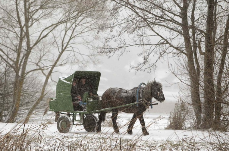A man rides a horse-drawn cart during heavy snow fall near the village of Petravinka, some 25 miles east of Minsk, December 5, 2012. (Vasily Fedosenko/Reuters)