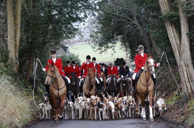 Members of the Old Surrey Burstow and West Kent Hunt depart from Chiddingstone Castle for the annual Boxing Day hunt in Chiddingstone, south east England December 26, 2012. A ban imposed seven years ago states that foxes can be killed by a bird of prey or shot but not hunted by dogs. Hunts continue nowadays with pursuers accompanying dogs in chasing down a pre-laid scented trail. (Luke MacGregor/Reuters)