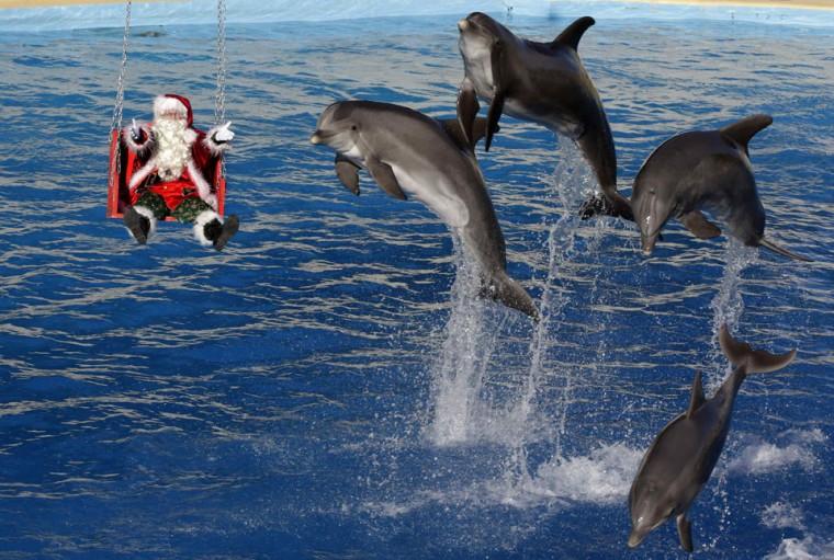 Dolphins jump near a man dressed as Santa Claus at the Marineland aquatic park in Antibes, France. (Eric Gaillard/Reuters)