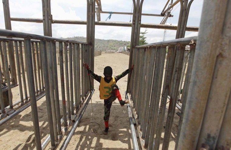 A child jockey waits in the starting gates before a horse race outside Bima. The chairman of the races' organizing team, Hajji Sukri, denies that there is any danger to the children saying they are all skilful riders and none has been killed or seriously hurt. Picture taken November 18, 2012. (Beawiharta/Reuters)