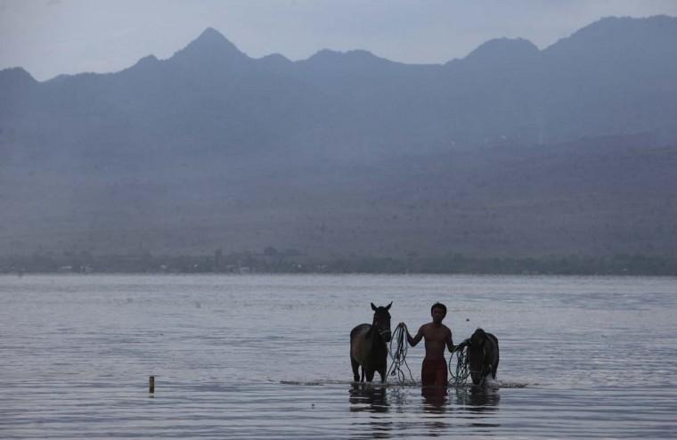 A man walks with his horses after washing them following a race at Kalaki beach on the outskirts Bima, on Indonesia's Sumbawa island, November 18, 2012. (Beawiharta/Reuters)