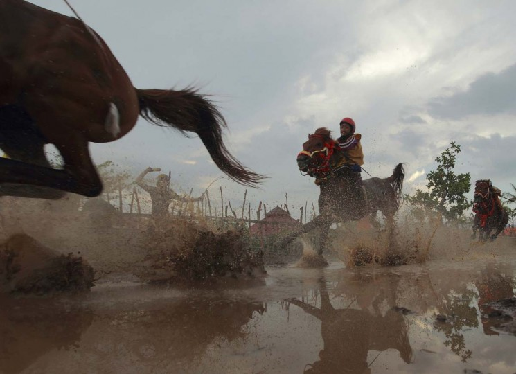 Horses race at Panda racetrack, outside Bima. Dozens of child jockeys, some as young as eight-years-old take part in the races. Picture taken November 18, 2012. (Beawiharta/Reuters)