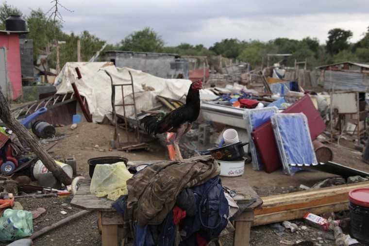 A rooster perches on a pile of clothes after a tornado destroyed several houses in La Providencia, in the state of Nuevo Leon May 9, 2012. A tornado swept through the small village on the evening of May 6, destroying houses and leaving 14 families homeless, according to local media. (Daniel Becerrill/Reuters)