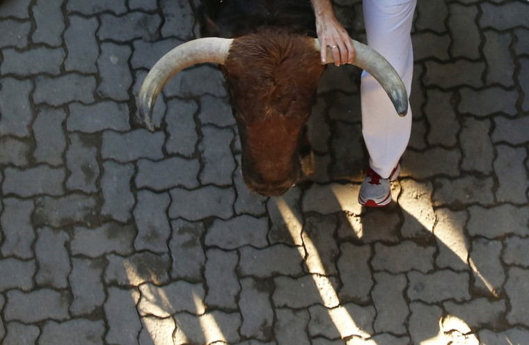 A runner grabs the horn of a Victoriano del Rio fighting bull as they sprint at the entrance to the bullring during the sixth running of the bulls of the San Fermin festival in Pamplona July 12, 2012. Several runners suffered light injuries in the fastest run (two minutes and twenty seconds) so far in this festival, according to local media. (Susana Vera/Reuters)
