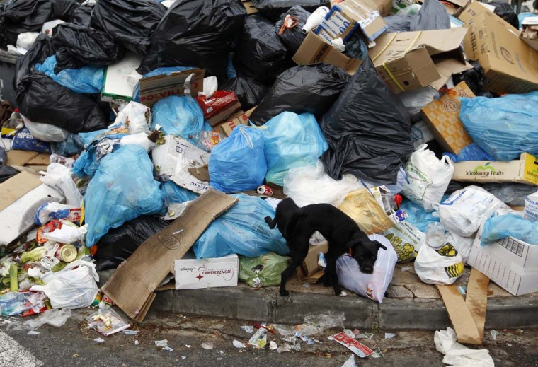A dog urinates over a pile of garbage during the twelfth day of a strike by garbage collectors in Chipiona, southcoast Spain, January 27, 2012. The workers are on a strike due to not having received their salary since November. (Marcelo del Pozo/Reuters)