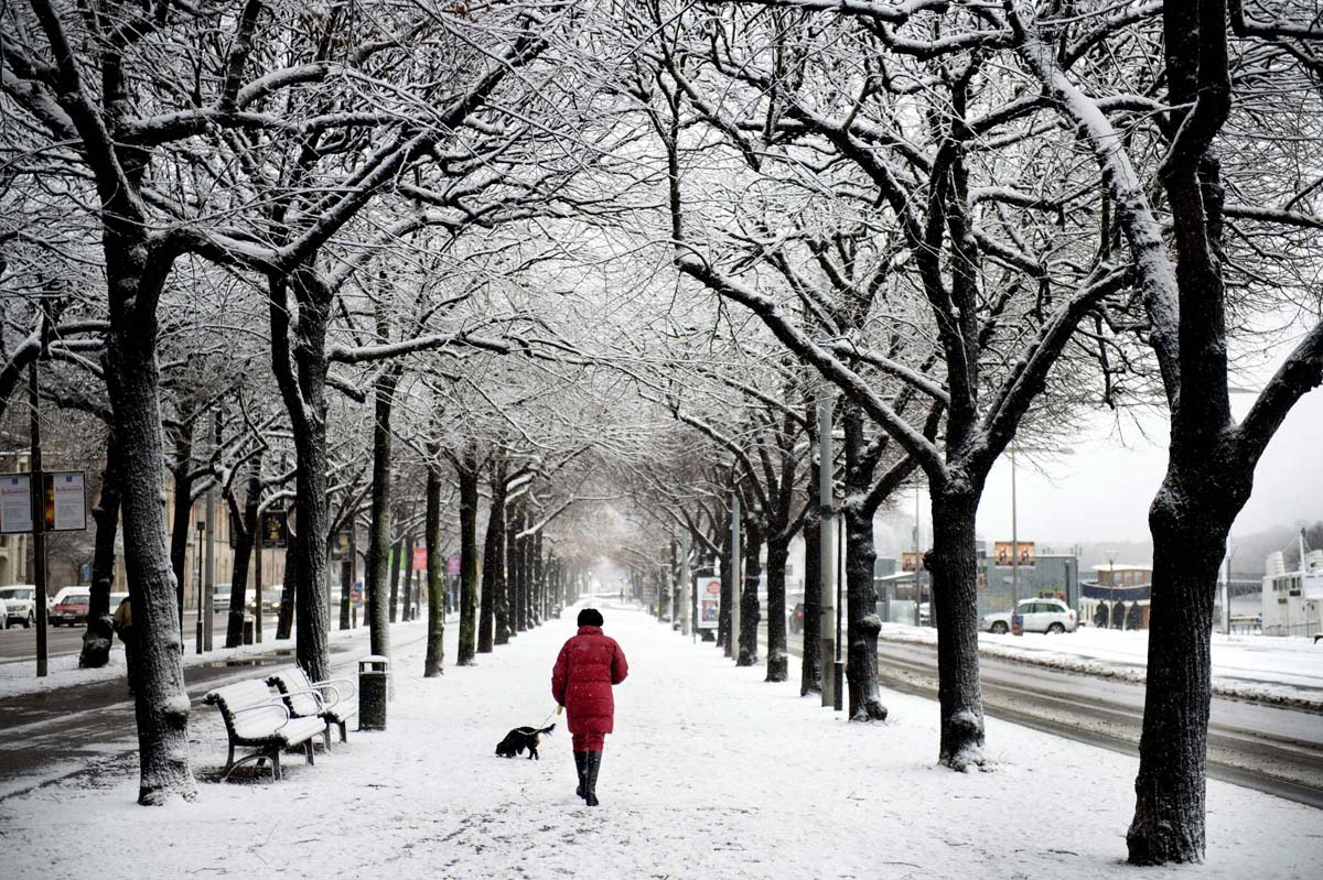 stockholm in the snow - photo #5