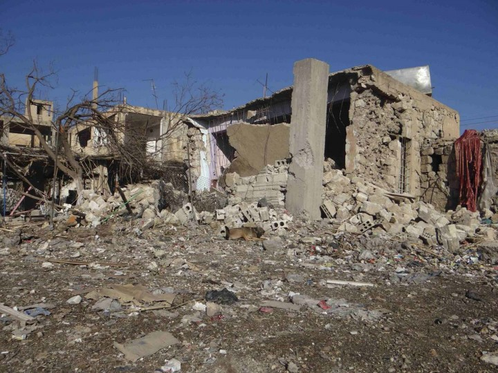A dog sits near buildings damaged after a Syrian Air Force fighter jet loyal to Syria's President Bashar al-Assad fired missiles at the town of Ras al-Ain, near the province of Hasaka, 373 miles from Damascus. Picture taken November 28, 2012. (Samer Abdullah/Shaam News Network/Reuters)