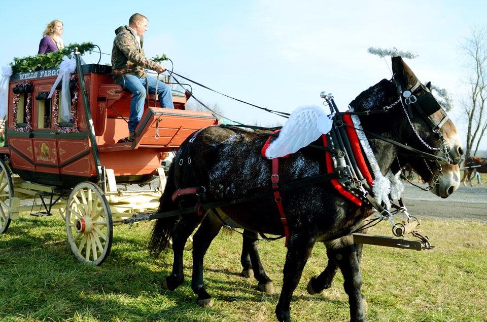 lisbon ole fashion christmas horse parade