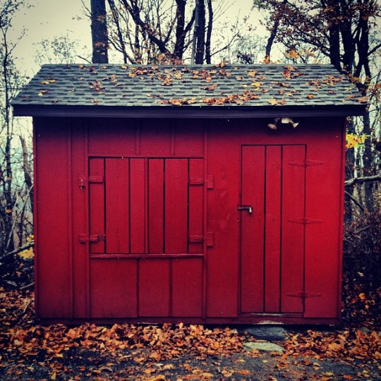 Barn-red shack with fallen leaves scattered on gray shingled roof.