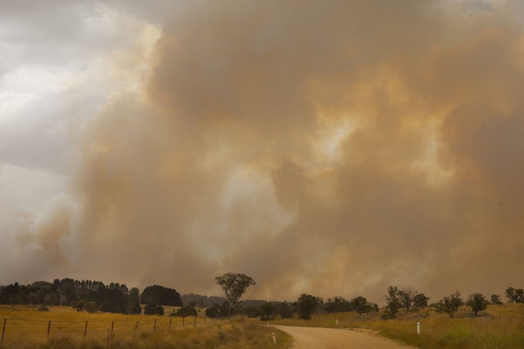 Smoke rises as fires rage in the Kybeyan Valley, New South Wales in Nimmitabel, Australia. NSW was declared a total fire ban with the Illawarra, Shoalhaven and Southern Ranges regions placed on 'Catastrophic' alert. (Pamela Martin/Getty Images)