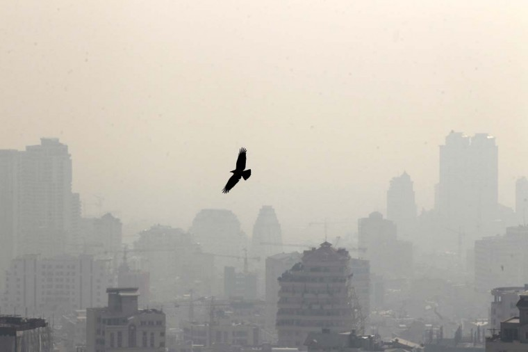 A picture taken on January 7, 2013 shows a bird flying in front of buildings in the polluted skyline of the Iranian capital Tehran. Air pollution in Tehran has left 4,460 people dead in a year, an Iranian health official said in reports Sunday, with another sounding the alarm over high dose of carcinogens in domestically-made petrol. (Atta Kenare/AFP/Getty Images)
