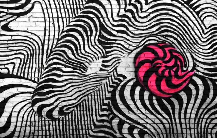 "Artist ""Never2501"" designed this mural with zebra-like swirls. It's located at 610 N. Howard St. (Algerina Perna/Baltimore Sun)"