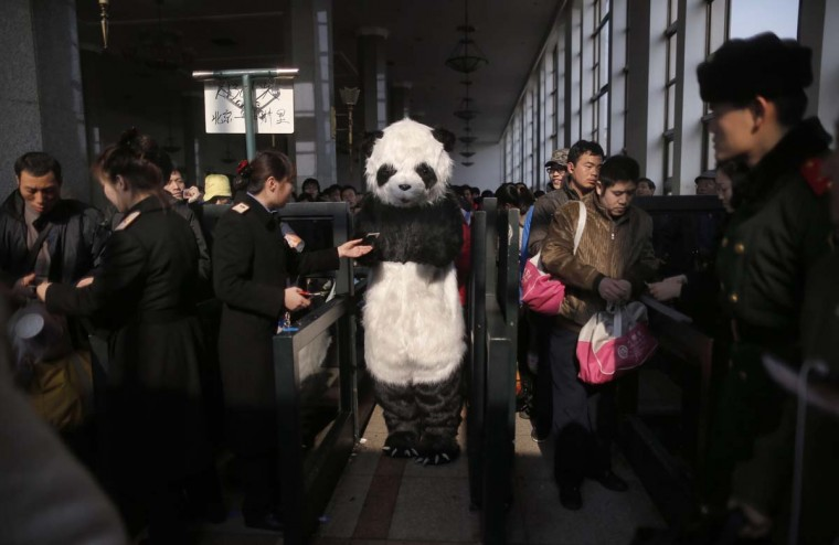 A passenger wearing a panda costume shows her ticket to a staff member as she enters the Beijing Railway Station January 26, 2013. A group of four people, including one wearing a panda costume, are experiencing the Spring Festival peak travel period in this special way as they plan to take a train to Cangzhou of Hebei province and then come back. The 2013 Spring Festival travel peak period began on Saturday and will last till March 6. According to the Ministry of Transport, over 3.1 billion people are expected to travel via road or waterways during this period, a year-on-year increase of 4 percent, local media reported. Picture taken January 26, 2013. (Kevin Zhao/Reuters)