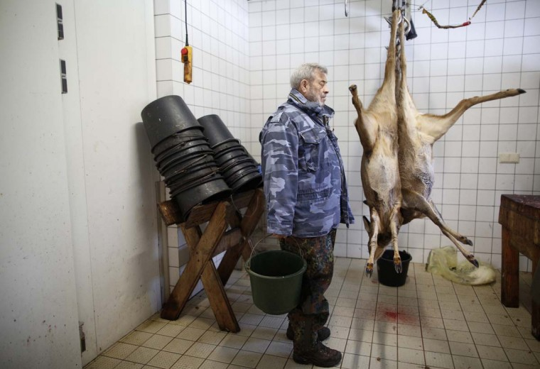 Wolf researcher Werner Freund, stands next to hanged deer cadavers at Wolfspark Werner Freund, in Merzig in the German province of Saarland January 24, 2013. (Lisi Niesner/Reuters)