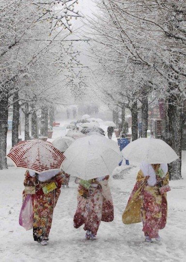 Japanese women in kimonos walk during heavy snowfall at Toshimaen amusement park in Tokyo, as they attend a ceremony celebrating Coming of Age Day, January 14, 2013. Youths across Japan are honoured with special coming-of-age ceremonies when they reach the age of 20. The Tokyo metropolitan area had its first snowfall this season on Monday, which affected transportation as some flights to and from the the capital's Haneda airport had to be cancelled, parts of expressways temporarily closed and local train services delayed. (Yuya Shino/Reuters)