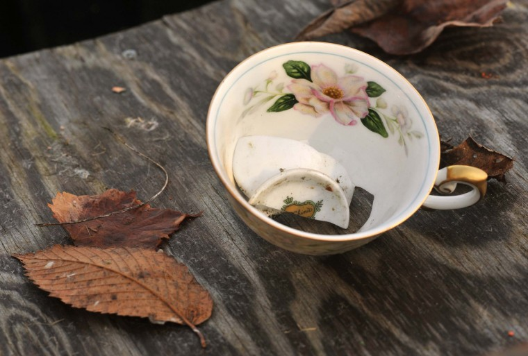 A china teacup and a few other household items were left behind when the rear house at the northwest edge of the Scott Settlement was abandoned after a tree limb crushed the roof. Its last occupant was the family of one of Ricky Scott's brothers, Harvey Scott, Jr. (Amy Davis/Baltimore Sun)